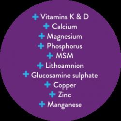osteomedic-info
